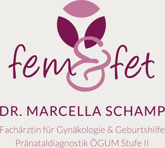 Logo: Fem & Fet